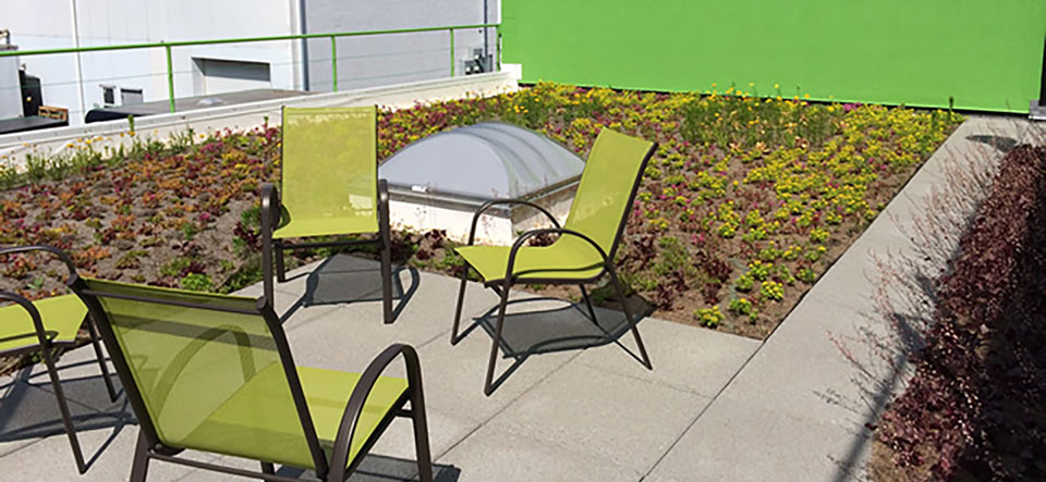 Green Roof with Patio Chairs